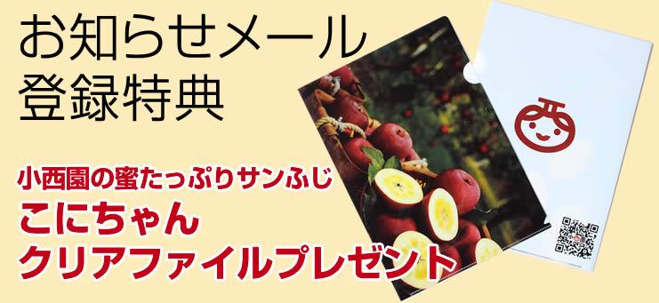 小西園の蜜たっぷりサンふじ<br /> こにちゃんクリアファイルプレゼント