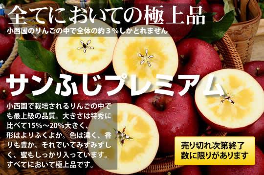小西園で栽培されるりんごの中でも最上級の品質。大きさは特秀に比べて15%~20%大きく、 形はよりふくよか。色は濃く、香りも豊か。それでいてみずみずしく、蜜もしっかり入っています。 すべてにおいて極上品です。