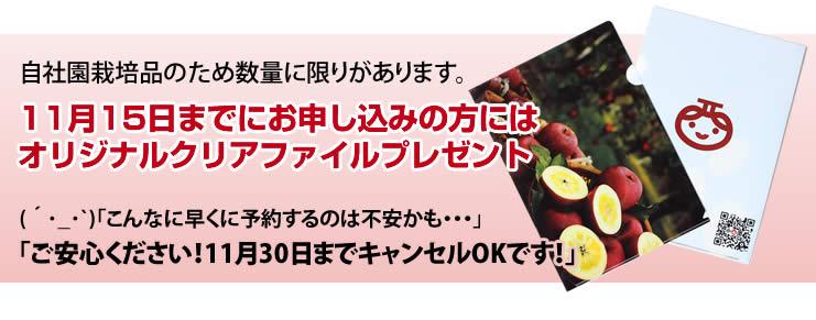 11月15日までにお申し込みの方には<br /> オリジナルタオルハンカチプレゼント! (´・_・`)「こんなに早くに予約するのは不安かも・・・」<br /> 「ご安心ください!11月30日までキャンセルOKです!」