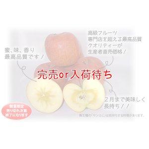画像3: サンふじ・ぐんま名月詰め合わせ 秀 10kg