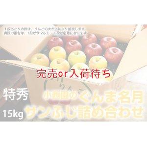 画像2: サンふじ・ぐんま名月詰め合わせ 特秀 15kg