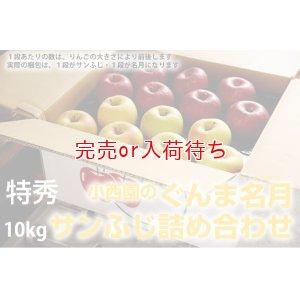 画像2: サンふじ・ぐんま名月詰め合わせ 特秀 10kg