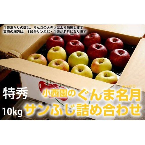 他の写真1: サンふじ・ぐんま名月詰め合わせ 特秀 10kg