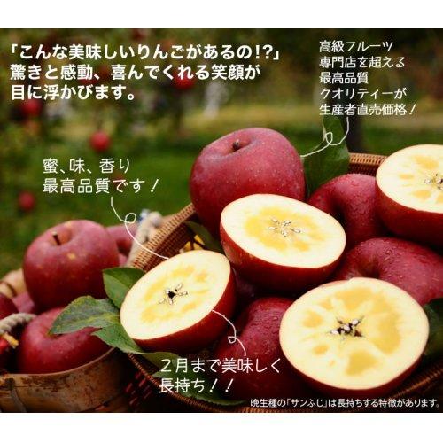 他の写真2: サンふじ・ぐんま名月詰め合わせ 特秀 15kg