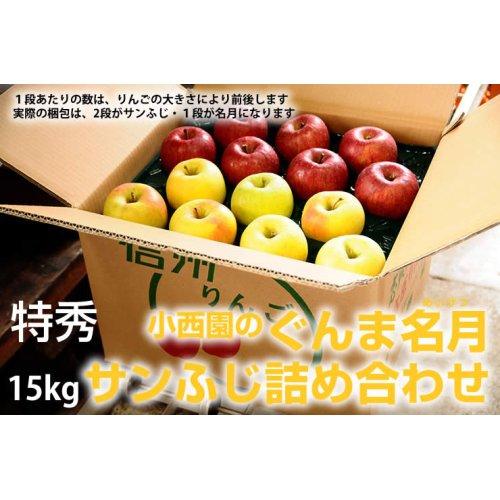 他の写真1: サンふじ・ぐんま名月詰め合わせ 特秀 15kg