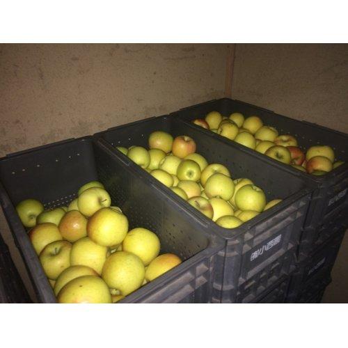 他の写真2: 《搾りたて発送》 森のりんご すりおろしジュース 名月 6本セット