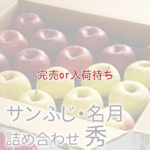 画像1: サンふじ・ぐんま名月詰め合わせ 秀 10kg