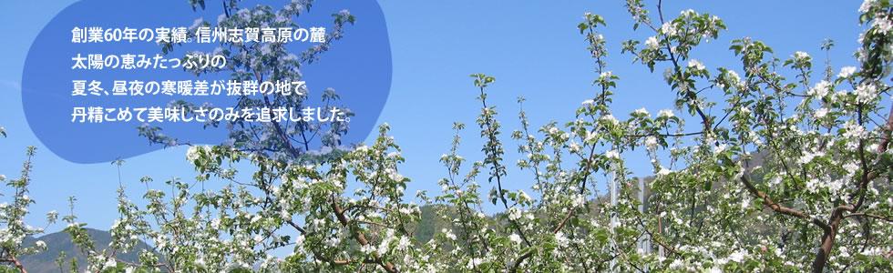 創業60年の実績。信州志賀高原の麓 太陽の恵みたっぷりの 夏冬、昼夜の寒暖差が抜群の地で 丹精こめて美味しさのみを追求しました。